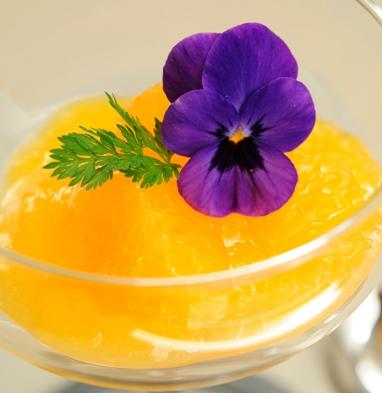 柑橘デザート_正方形web20